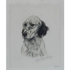 Vintage Handcolored Engaving Portrait of a Setter signed by Leon Danchin