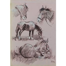 Peter HobbsStudy Sketches of Horses by Peter Hobbs, 1930-1994 Sepia tone Watercolorc1950-60