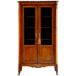 Antique French Kingwood Bookcase Vitrine, circa 1870