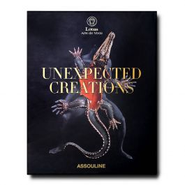 Unexpected Creations