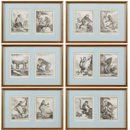 Set of Six 18th Century French Monkey Engravings in Frames with Blue Mounts