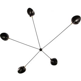 Spider Wall  Lamp With Five Arms