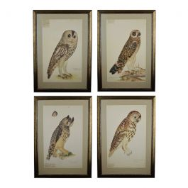 Collection of Four Large Rudbeck Owls