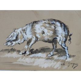 Charles JacqueWatercolor Study of Pig by Charles Jacque Barbizon School French 19th century19th century