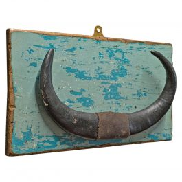 Vintage Mounted Horn, Continental, Water Buffalo Display, Mid-20th Century