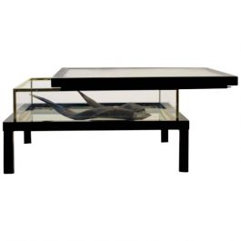 Modernist Romeo Rega Sliding Top Brass Coffee Table